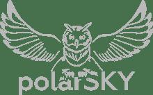 Студия веб-разработки PolarSky - логотип